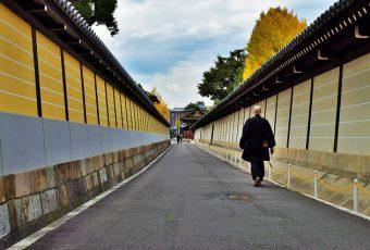 7 Tempat Wajib Kunjung di Jepang, Rekomendasi Warga Lokal