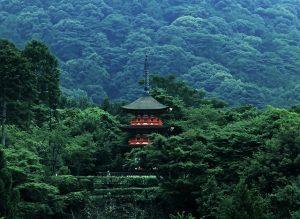 Romantis dan Instagenik, ini 7 Taman Nasional Wajib Kunjung di Jepang
