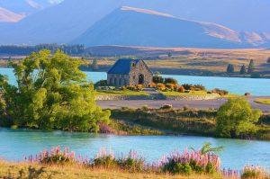 8 Hal yang Bikin Jatuh Cinta dengan Selandia Baru
